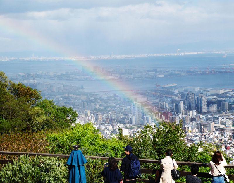 雨の日限定無料ツアーあり!神戸布引ハーブ園の梅雨の楽しみ方