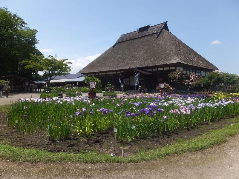 五感を研ぎ澄ませ〜十和田市「手作り村鯉艸郷」は四季の花溢れる観光農園