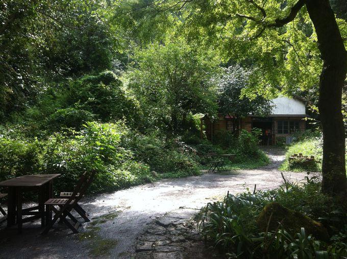 木々に囲まれた古民家