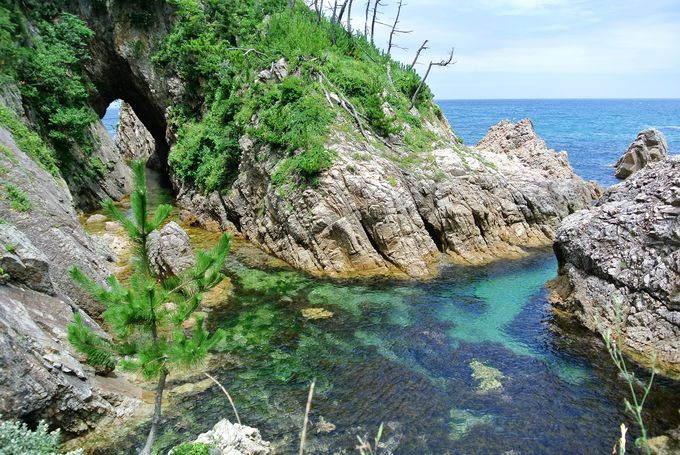 鳥取県の各自治体でも独自の観光支援策を実施(3)