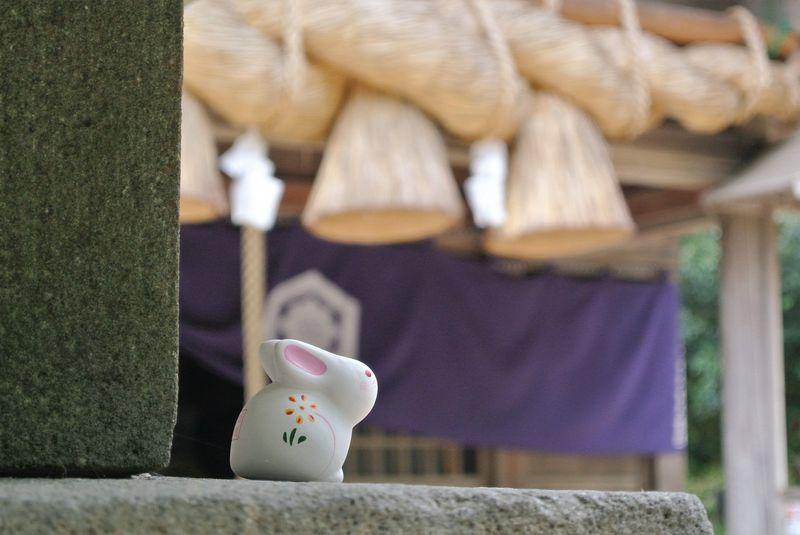 ウサギがあなたの縁結びをお手伝い!?鳥取「白兎神社」