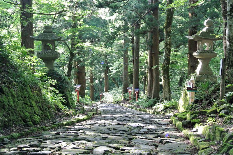 日本で1番長い自然石の参道が超神秘的!鳥取「大神山神社奥宮」