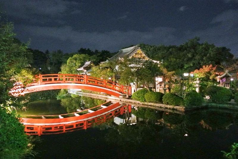 無料で京都を感じられるパワースポット庭園「神泉苑」が凄い!