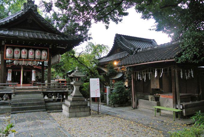 龍馬とおりょうのロマンチックな逸話が残る神社
