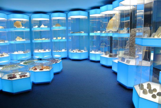 2階は古代の海を再現した展示