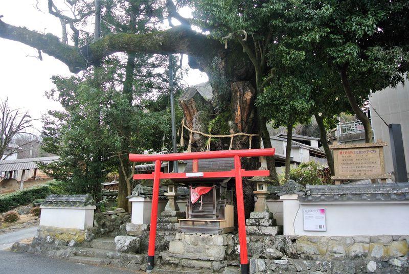 陶器の魅力や歴史を体感!兵庫県「篠山市今田地区」