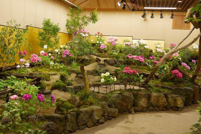 王道の日本庭園「由志園(ゆうしえん)」
