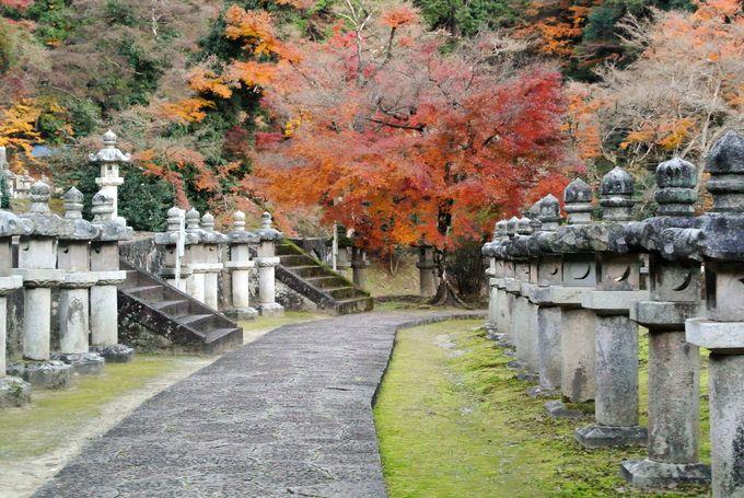 池田家の藩主とその一族が眠る墓地