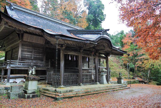 由緒ある厳かな雰囲気の神社