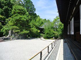 特別名勝の枯山水庭園は必見!京都「金地院」で大人の修学旅行はいかが?