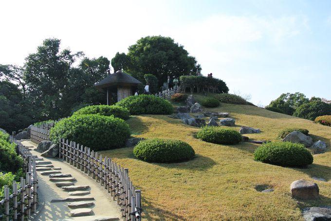 園内の絶景を眺められるスポット