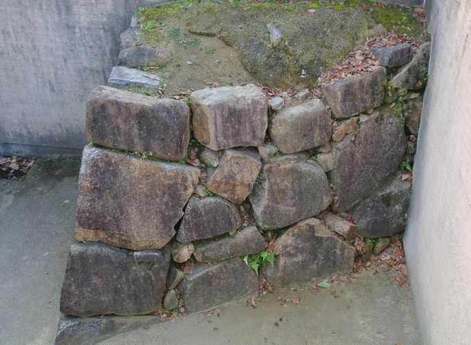 多様な種類の石垣にも注目