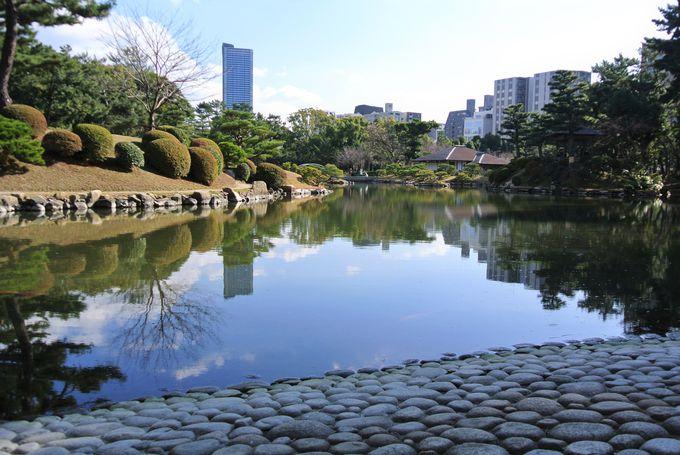 巨大な池をたたえる都会のオアシス