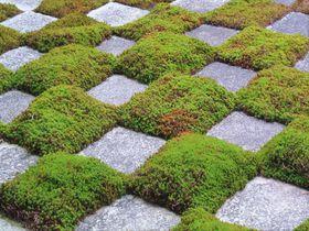 京都のインスタ映え必至スポット「東福寺本坊庭園」が凄い!