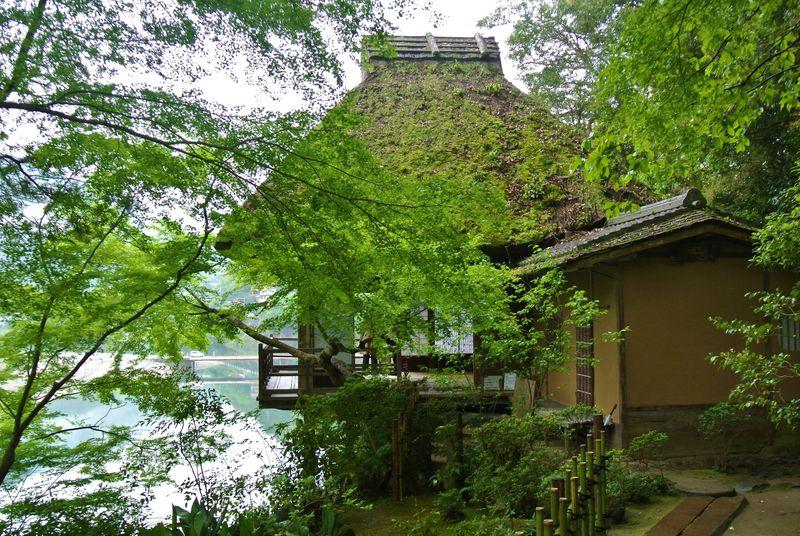 崖上の名建築!こだわりいっぱいの愛媛「臥龍山荘」が凄い!