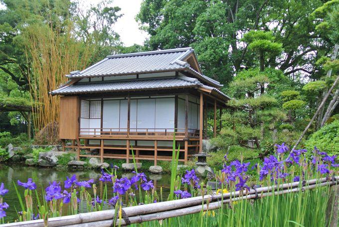 伝統的な池泉廻遊式庭園