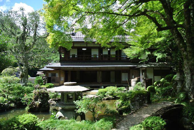 緑が美しい楽山荘庭園