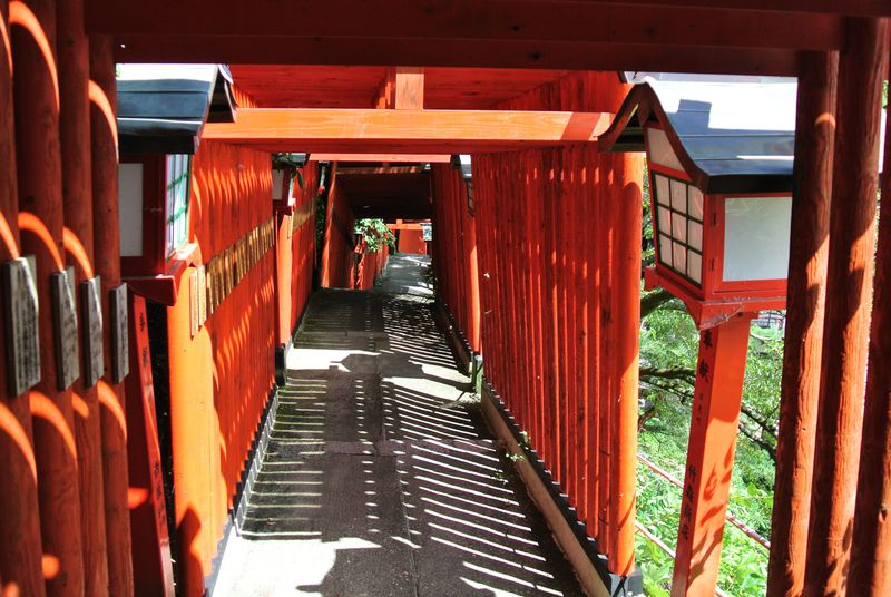 千本鳥居は必見!島根「太皷谷稲成神社」でご利益を授かろう