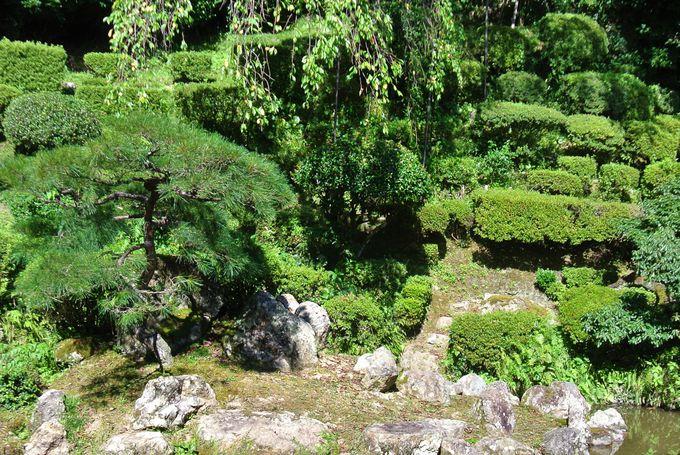 長寿の願いを込めた庭園