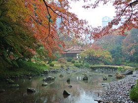 都内でモミジを見るならココ!「小石川後楽園」は穴場の紅葉スポット