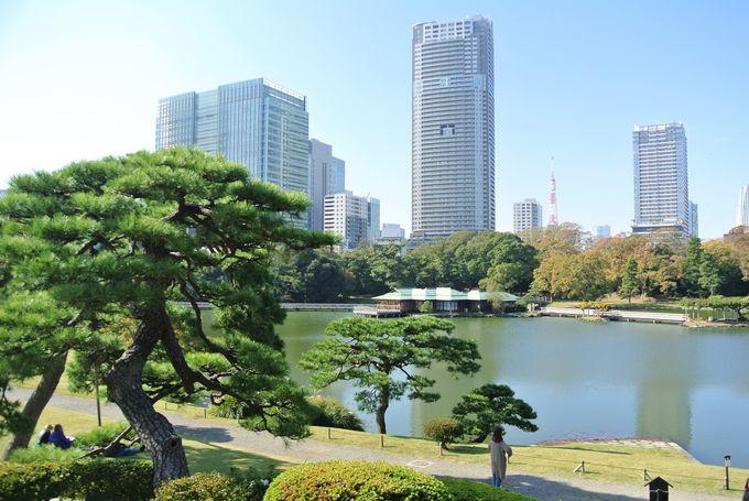 徳川幕府ゆかりの庭園