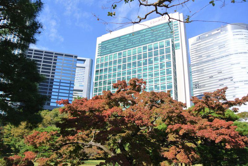 紅葉も楽しめる「浜離宮恩賜庭園」喧騒を離れた東京のオアシス