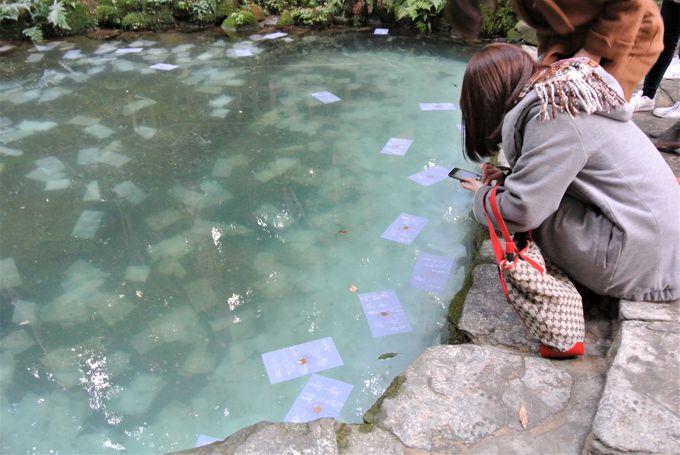 島根県の各自治体でも独自の観光支援策を実施(1)