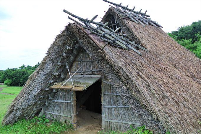 古代の暮らしの様子が分かる遺跡