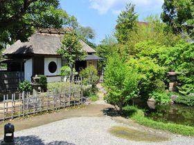 円窓が印象的!松江「普門院」の茶室は大人の癒しスポット