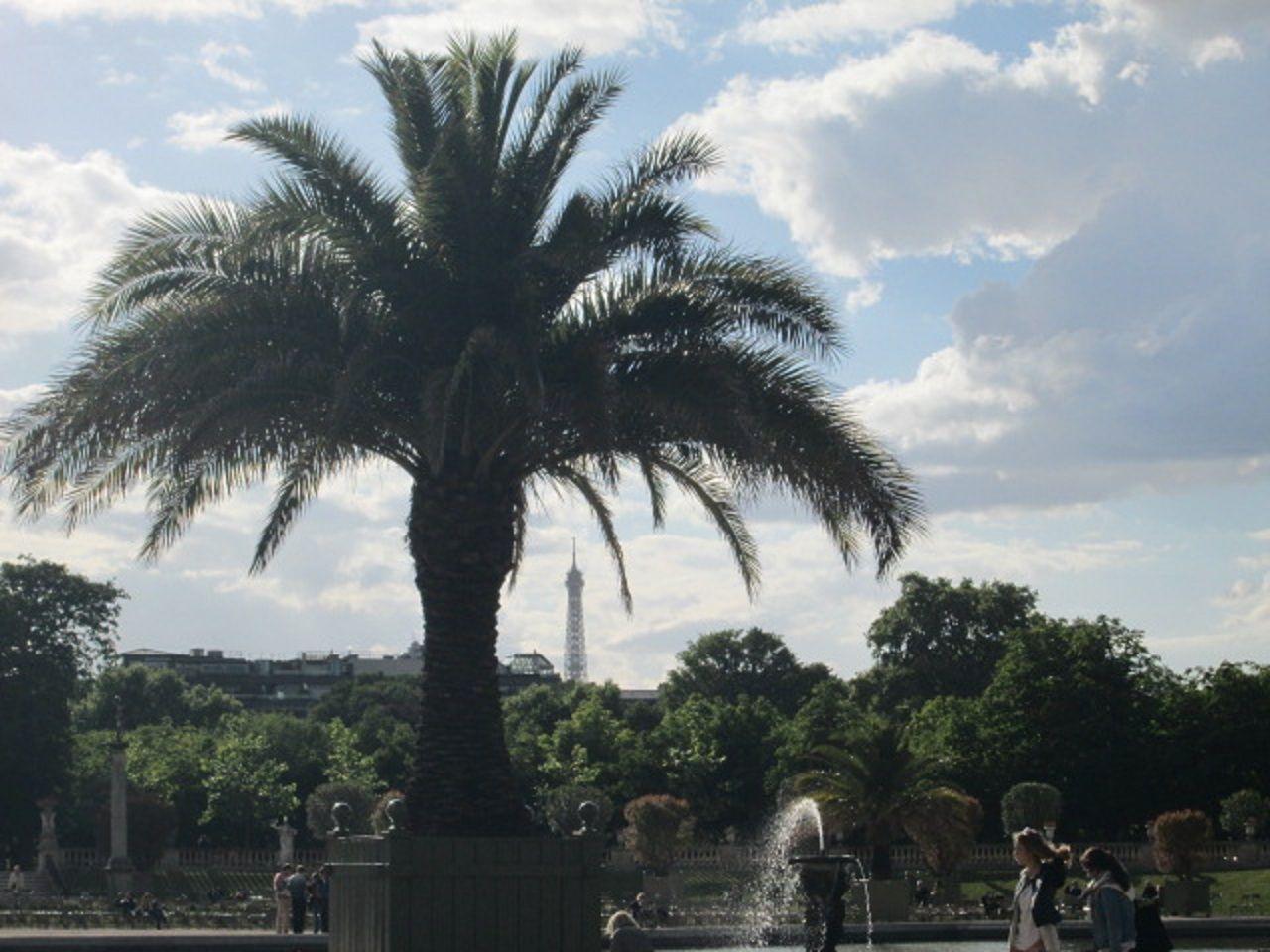 公園からパリ市内を眺める!