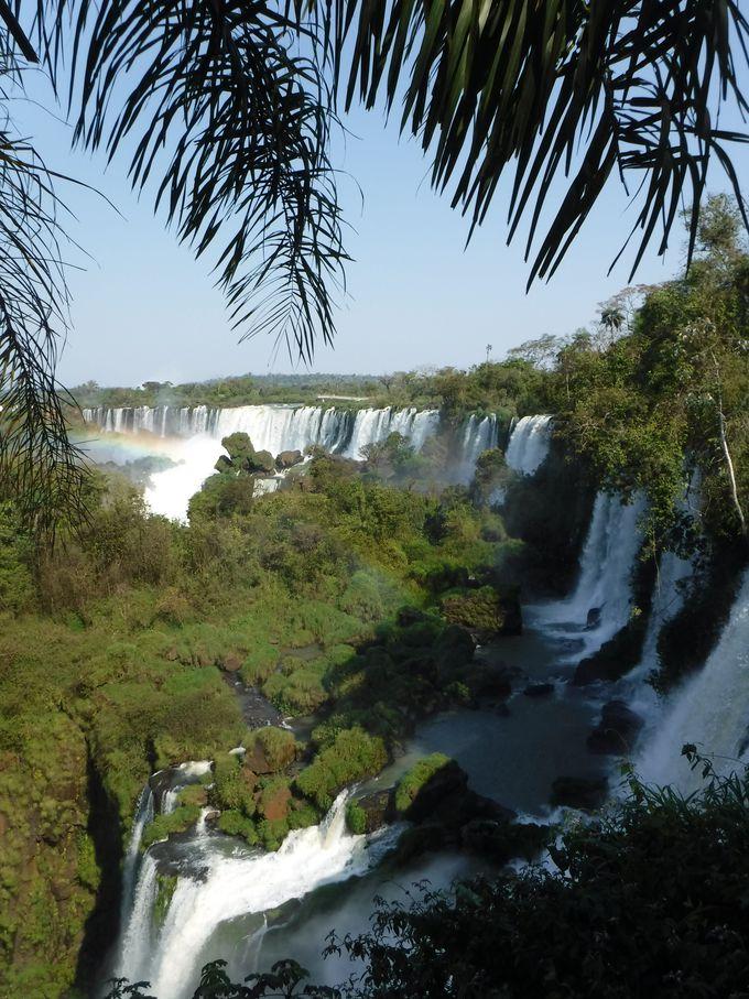 4、イグアスの滝を上から眺めながら遊歩道を散歩しよう!