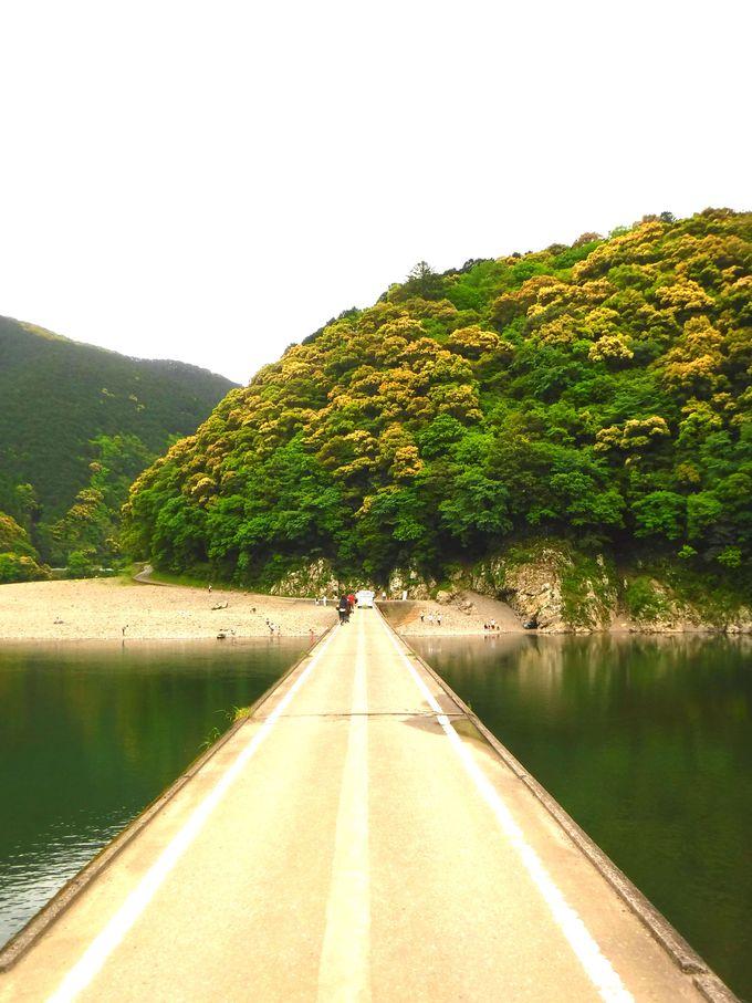 これぞ四万十川の絶景!「岩間沈下橋」で折り返し!
