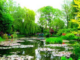 『睡蓮』の風景が目の前に!印象派モネが愛したジヴェルニー「モネの庭」