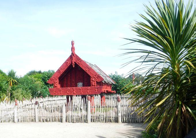 ニュージーランドらしいマオリの村も見学しよう!