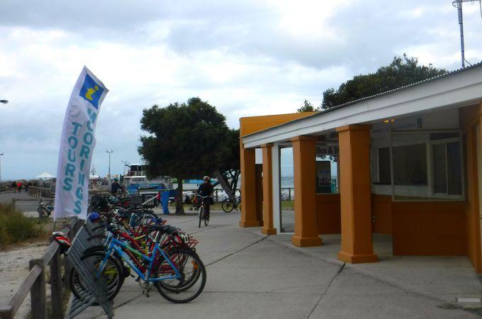 ロットネスト島の観光方法!お勧めはやはり島内循環バス