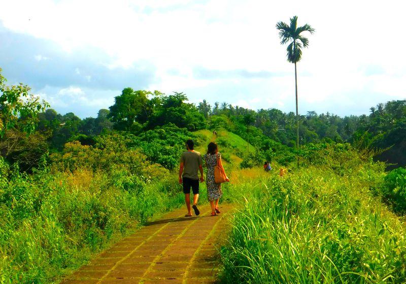 バリ島で棚田ウォーキング!ウブド「チャンプアンリッジ」は絶景と癒しの宝庫