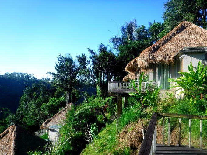 ヴィラのバンガローからウブドの森林の絶景を見渡す!