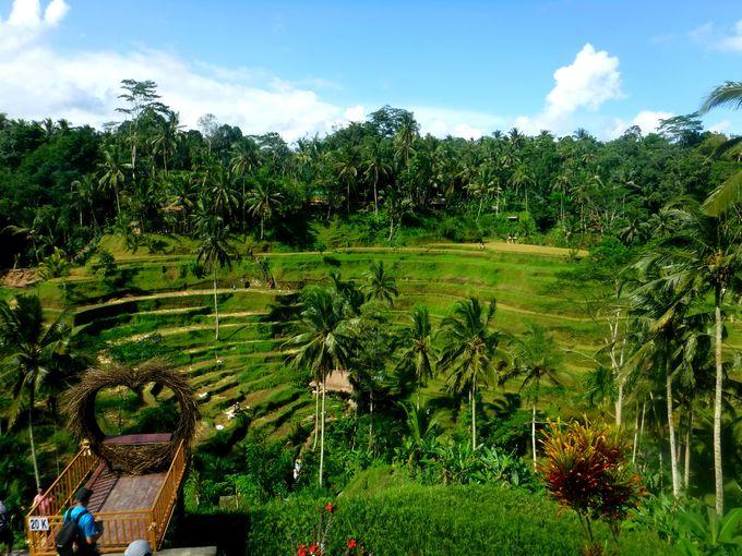 9位 バリ島/インドネシア