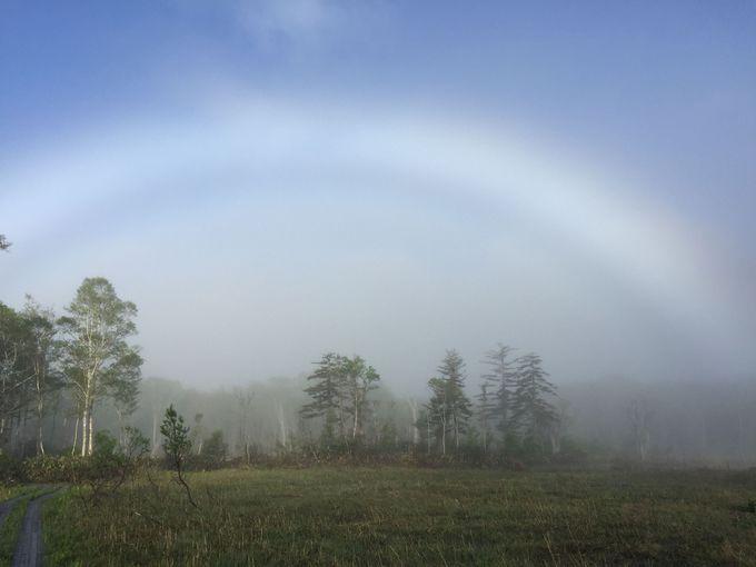会えたらラッキー! 早朝に出現する幻の白い虹って!?