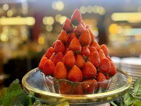 美味と健康!「いちごビュッフェ」はホテルニューオータニ大阪で