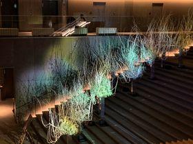 大階段が光に満ち溢れる!THE THOUSAND KYOTO「風花雪月」