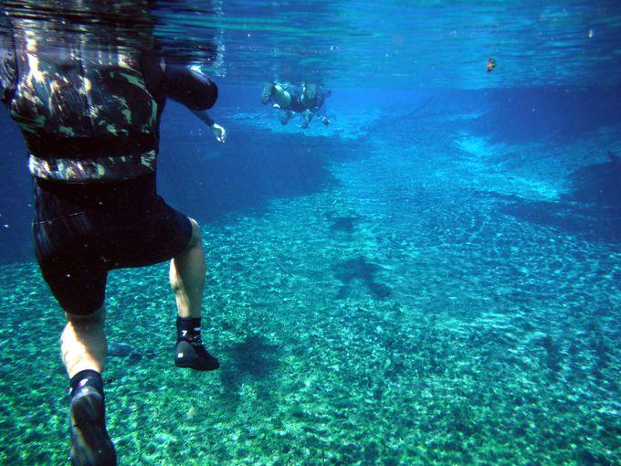 クリスタルのような水中世界
