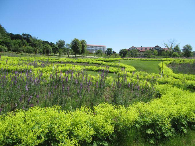 ガーデンエリアは15箇所!お気に入りの花壇を見つけよう