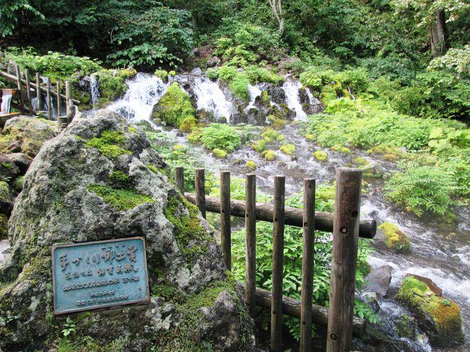 名水百選にも選ばれた北海道屈指の水の町「京極町」