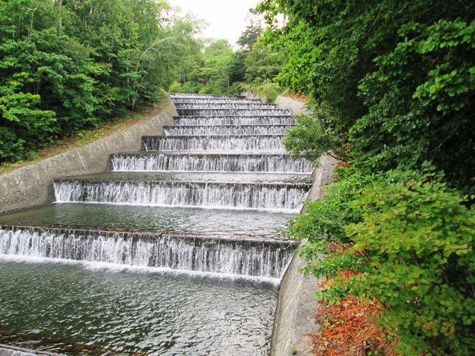 階段式の水路が美しい「奥沢水源地」と「田中酒造」