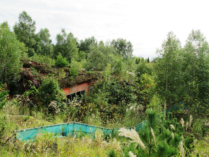南ゲート付近には被災した工場や幼稚園