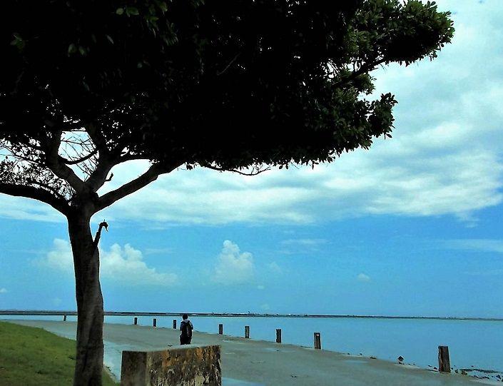 海を眺めながらのんびりお散歩。ゲームでバトルも楽しい