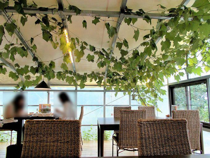 ぶどうの蔦からまるロマンティックな店内