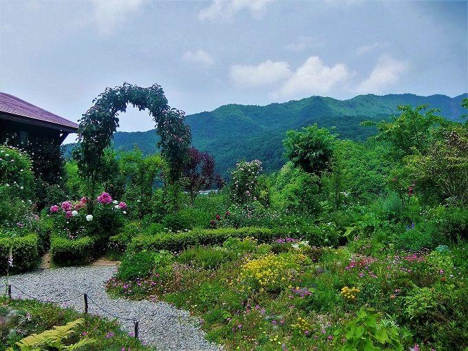 蔵王連山が借景のお庭「ペンションあっぷる」野山のお花畑