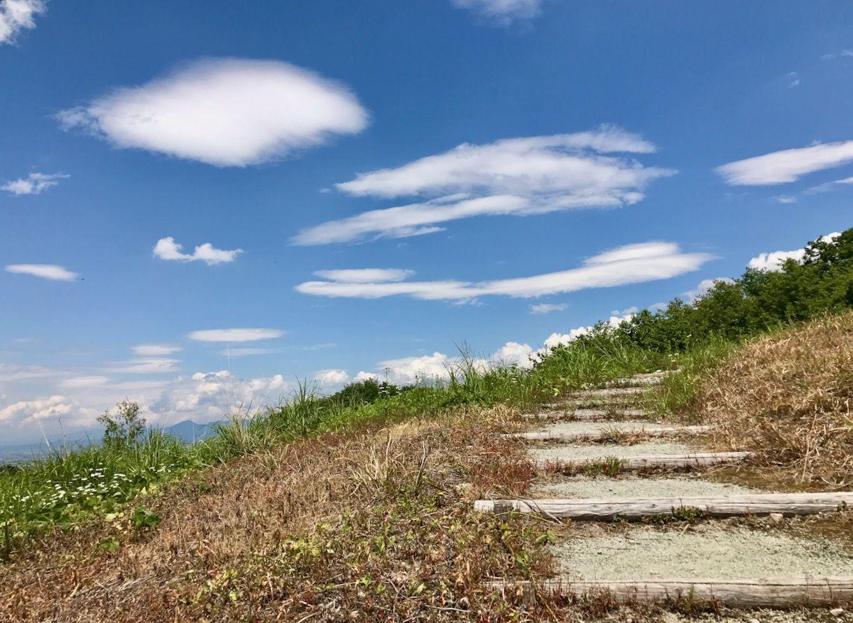 公園の丘の上に登ってみよう